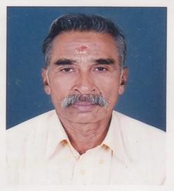 V S Subramanian